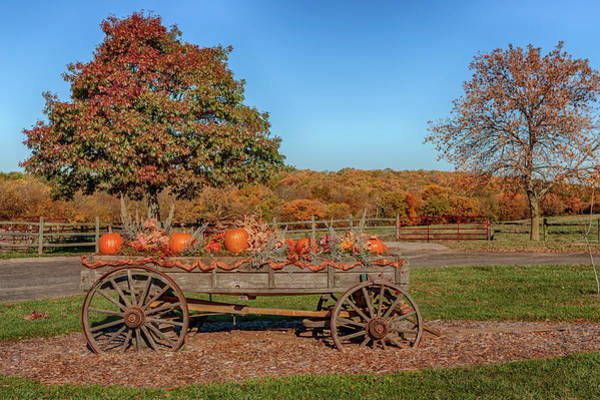 Photograph - The Pumpkin Wagon by Susan Rissi Tregoning