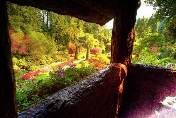 Photograph - The Quarry View From Fairy Cottage by Lawrence Christopher
