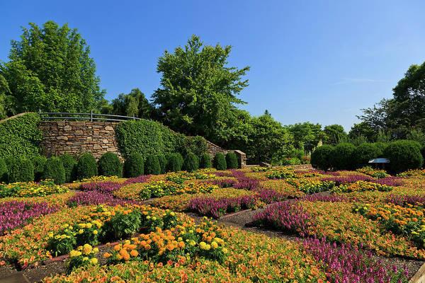 Photograph - The Quilt Garden by Jill Lang