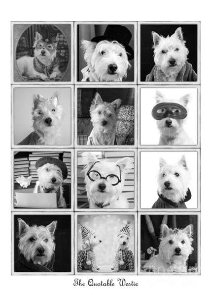 Photograph - the Quotable Westie Poster by Edward Fielding