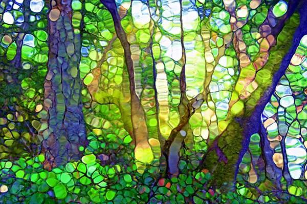 Distortions Digital Art - The Rainforest by Tara Turner