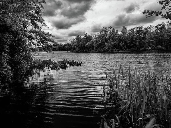 Photograph - The Rancocas River Landscape by Louis Dallara