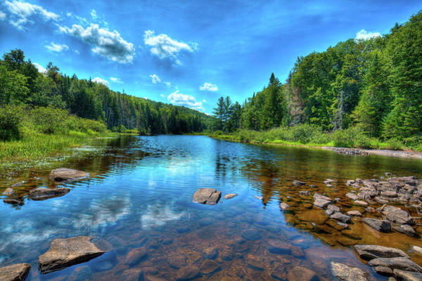 Photograph - The Raquette River Headwaters by David Patterson