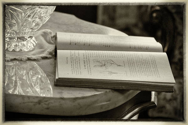Photograph - The Reading Table by James Woody