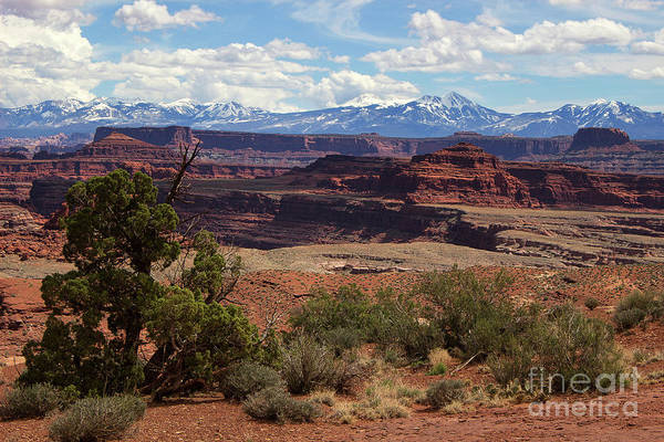 Photograph - The Red Divide by Jim Garrison