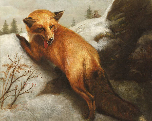 Turning Painting - The Red Fox by Abbott Handerson Thayer