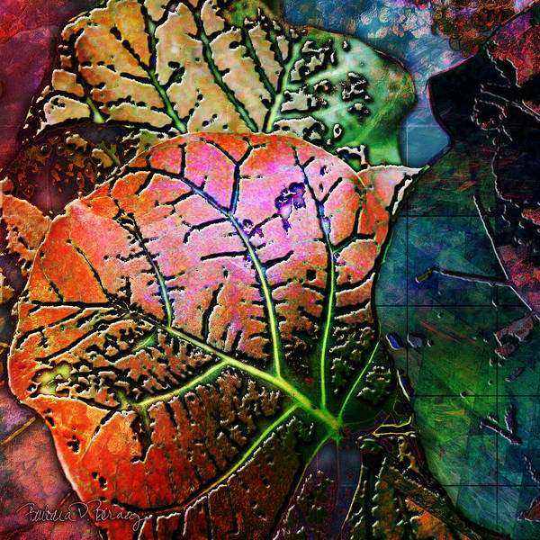 Digital Art - The Red Leaf by Barbara Berney