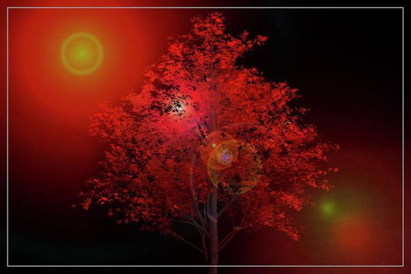 Digital Art - The Red Tree by Debra and Dave Vanderlaan