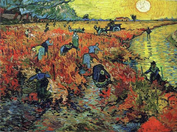 Painting - The Red Vineyard 1888 by Vincent Van Gogh