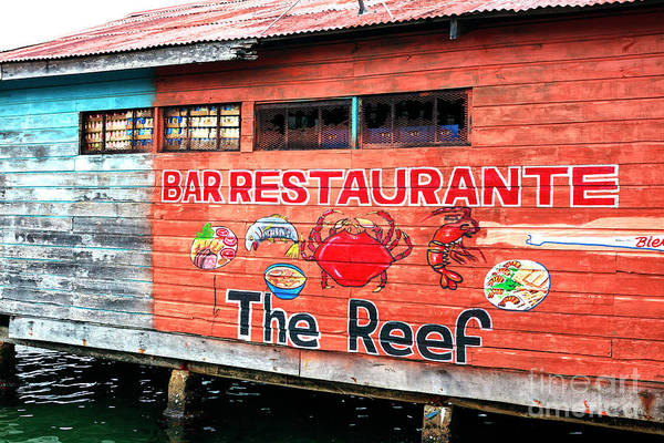 Photograph - The Reef Bocas Del Toro Panama by John Rizzuto