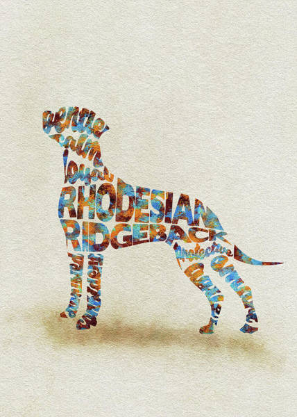Painting - The Rhodesian Ridgeback Dog Watercolor Painting / Typographic Art by Inspirowl Design