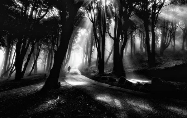 Sintra Photograph - The Rider by Jorge Maia
