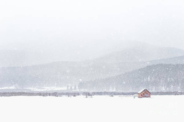 Distant Wall Art - Photograph - The Rise Of Winter by Evelina Kremsdorf