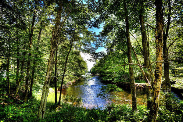 Photograph - The River At Covewood by David Patterson