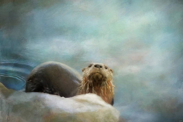 Photograph - The River Otter by Jai Johnson