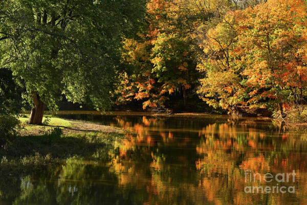 Photograph - The River Raisin In October by Charles Owens