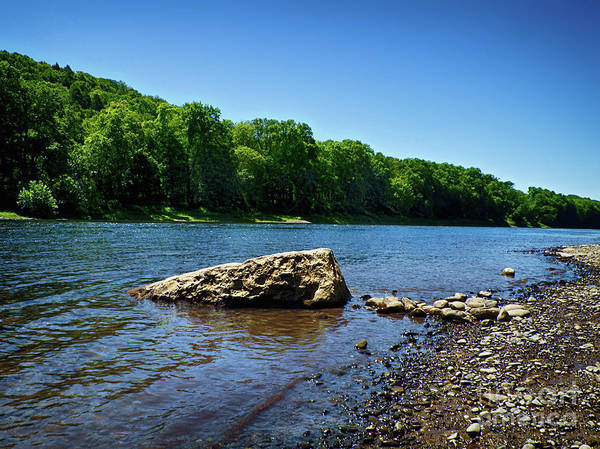 Photograph - The River's Edge by Mark Miller