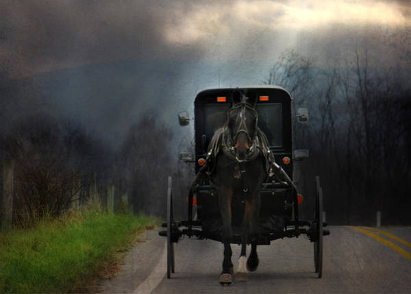 Amish Country Photograph - The Road Less Traveled by Lori Deiter