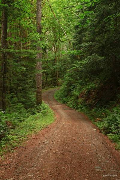Wall Art - Photograph - The Road Less Traveled by Winston Rockwell
