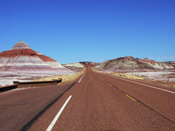 Photograph - The Road Through The Painted Desert by Mary Capriole