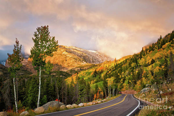Wall Art - Photograph - The Road To Bear Lake by Ronda Kimbrow