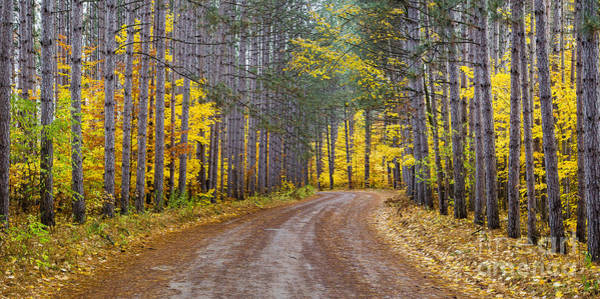 Wall Art - Photograph - The Road To Rainbow Bend by Twenty Two North Photography