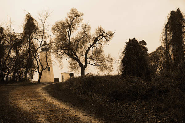 Photograph - The Road To Turkey Point Lighthouse by Dennis Dame