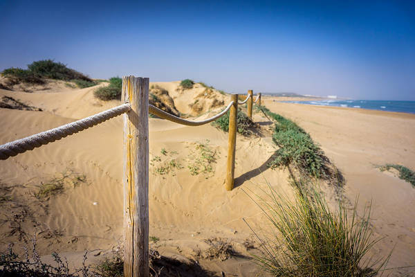 Photograph - The Rope Fence. by Gary Gillette