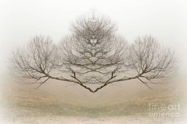 The Rorschach Tree Art Print