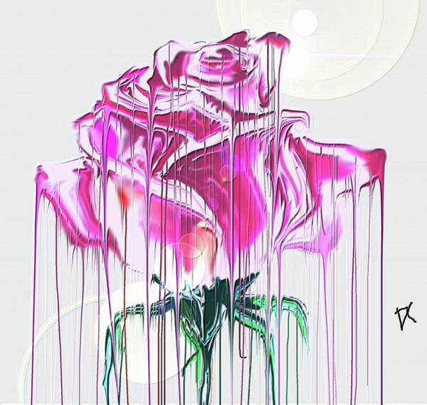 Digital Art - The Rose by Darren Cannell