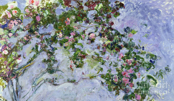 Stalk Painting - The Roses by Claude Monet