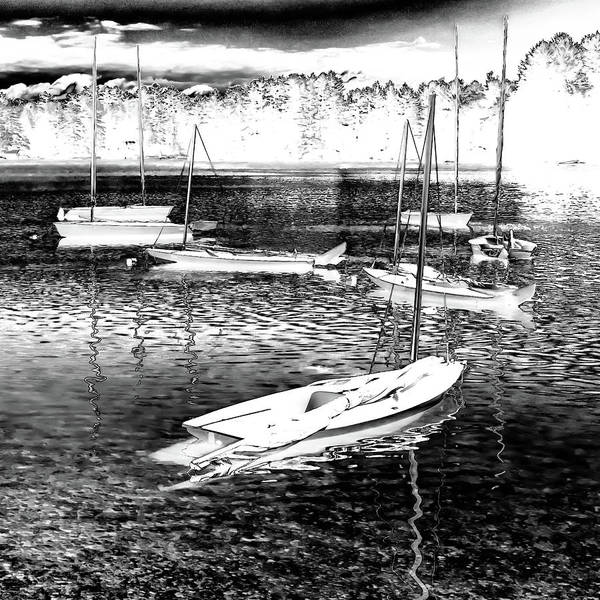 Photograph - The Sailboats by David Patterson