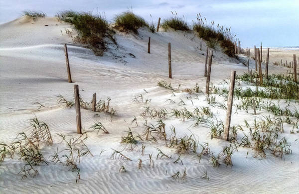 Photograph - The Sands Of Obx Hdr II by Greg Reed