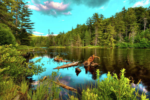 Photograph - The Scenic Nicks Lake by David Patterson