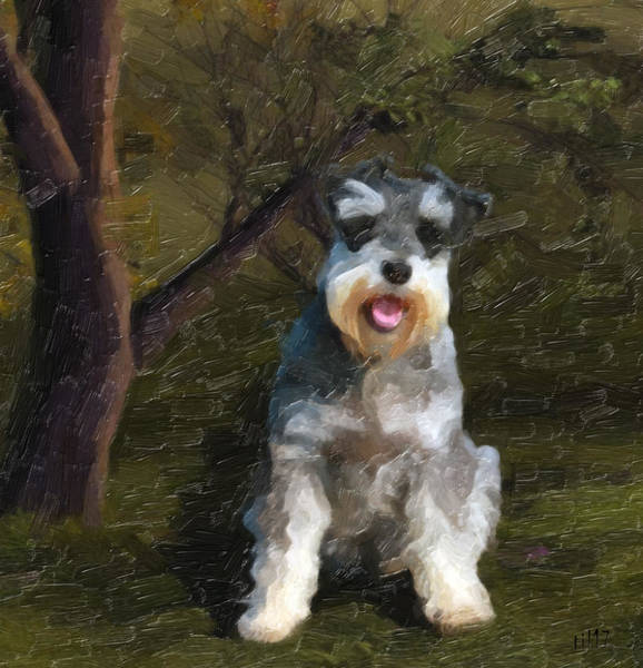 Purebred Mixed Media - The Schnauzer by Tilly Williams