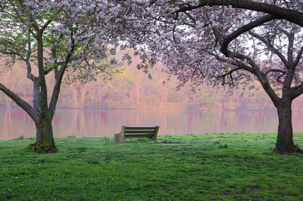 Photograph - The Schuykill River At Kelly Drive In The Spring by Bill Cannon