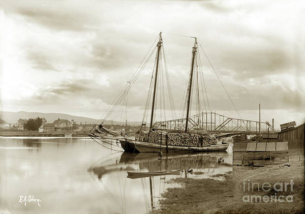 Photograph -  The Scow Schooner Caroline Dixon  With Load Of Wood For The Match Factory by California Views Archives Mr Pat Hathaway Archives