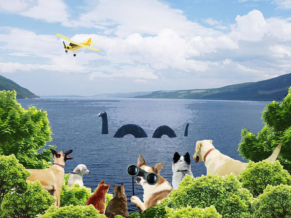 Sea Story Digital Art - The Search For The Dogness Monster by Emily Adams