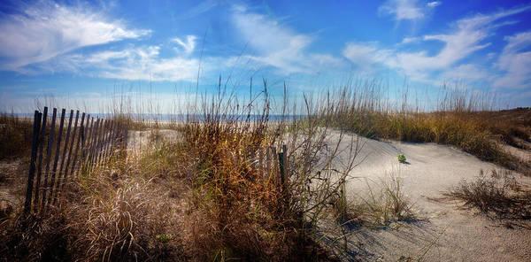 Photograph - The Seashore Dunes by Debra and Dave Vanderlaan