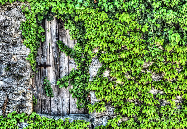 Hinges Photograph - The Secret Garden by DiFigiano Photography