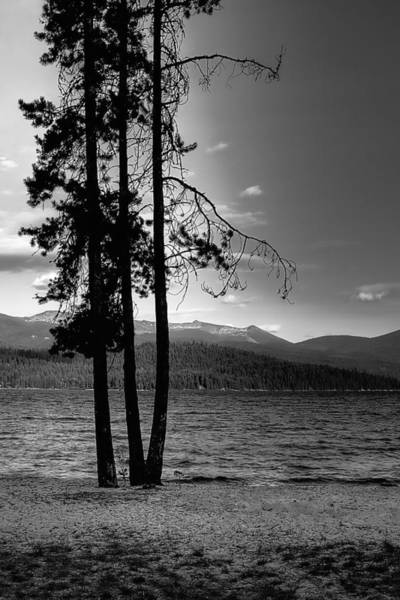 Photograph - The Selkirk Mountains On Priest Lake by David Patterson