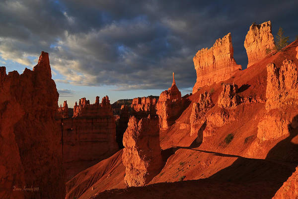 Sentinel Photograph - The Sentinel At Bryce Canyon by Donna Kennedy
