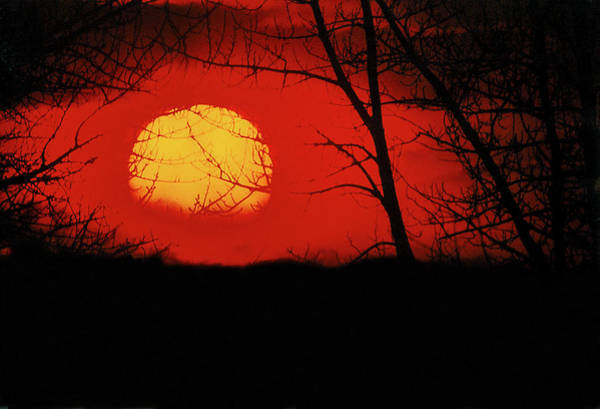 Photograph - The Setting Sun by Frank Vargo