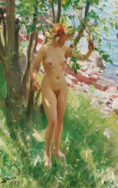 Wall Art - Painting - The Shadow by Anders Zorn