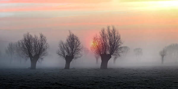 Mist Photograph - The Shadow Of Time by Piet Flour