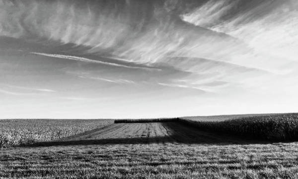 Corn Field Photograph - The Shadow by Wim Lanclus