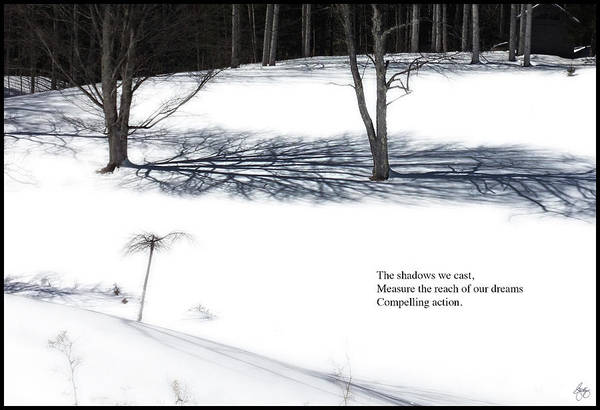Photograph - The Shadows We Cast Haiku by Wayne King