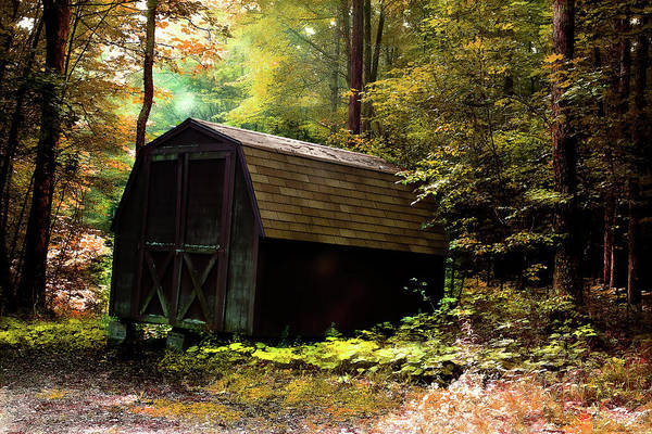 Photograph - The Shed by Reynaldo Williams