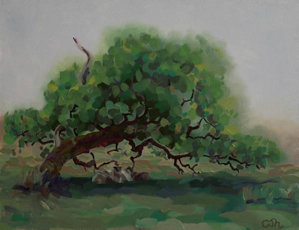 Painting - The Sheltering Oak Westport Mayo Ireland by Catherine Considine