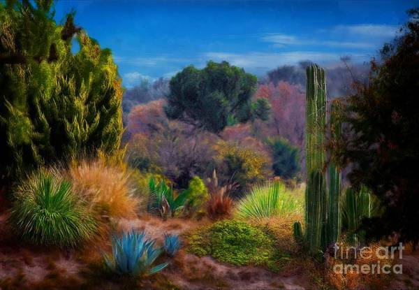 Photograph - The Sierra Madre by John  Kolenberg